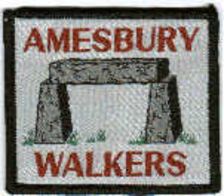 A picture for Amesbury-Walkers