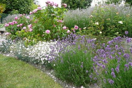 A picture for Harnham-Garden-Society