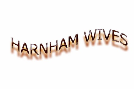 A picture for Harnham-Wives-Group
