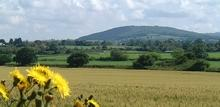 Click for a larger image of Blackmore Vale towards Duncliffe Hill