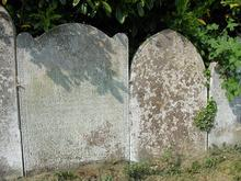 Click for a larger image of Gray family graves, East Stour, Dorset