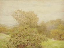 Click for a larger image of Spring in a Western Orchard