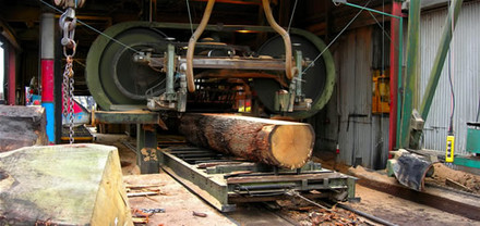 A picture for Vastern-Timber-Supply