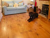Oak flooring image